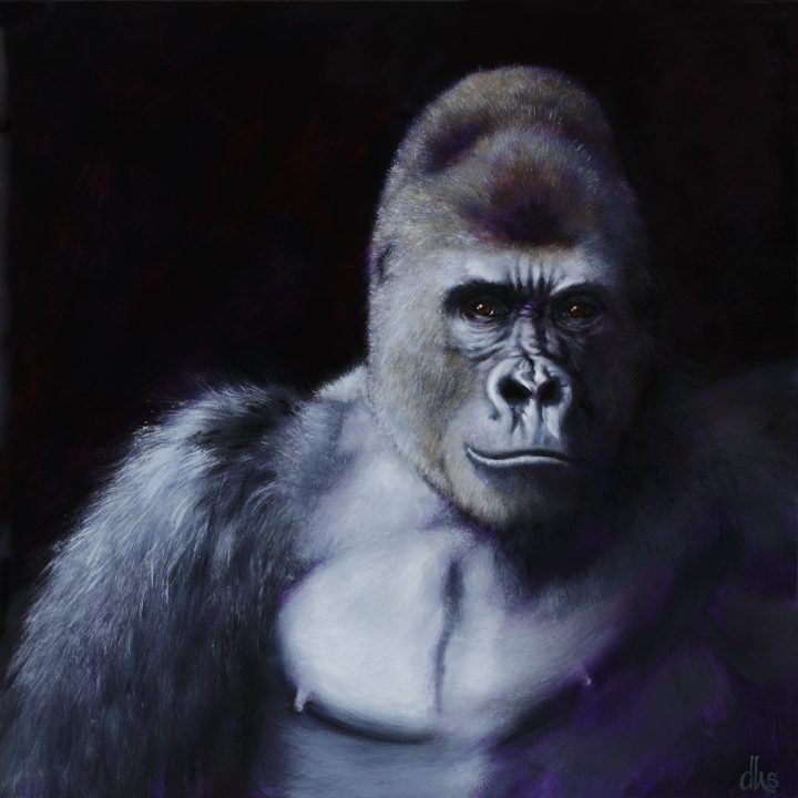 from the Houston Zoo, 24 x 24, oil on wood panel, 2016