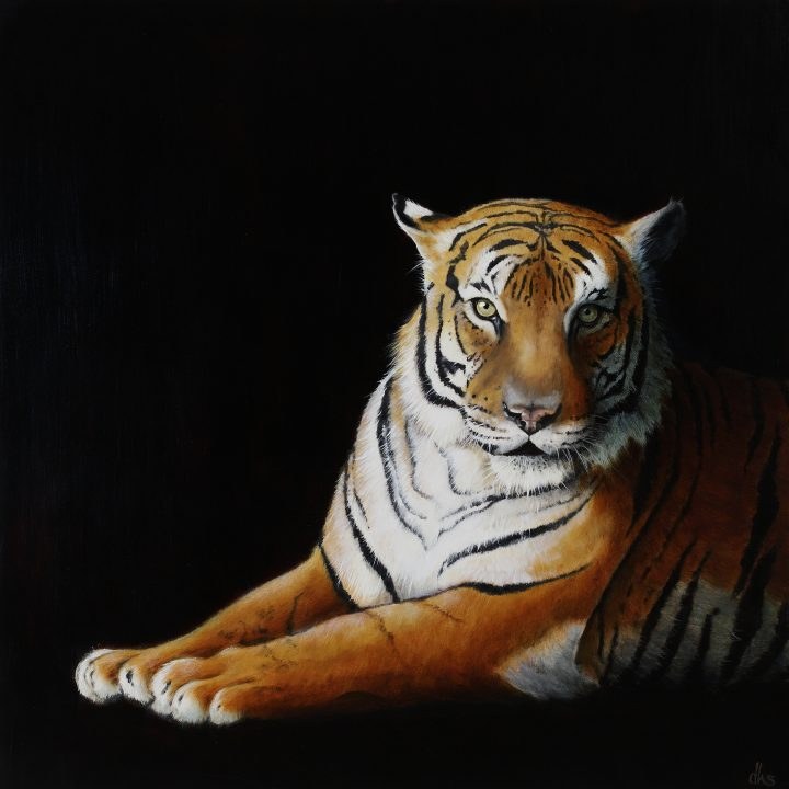 from the Houston Zoo, 36x36 oil on wood panel, 2016